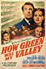 "1941 (14th) Best Picture Poster: ""How Green Was My Valley"""